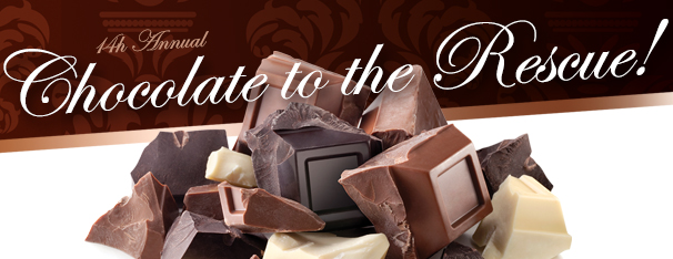 Chocolate Logo Banner Website 2016.jpg